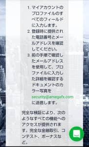 AMEGA FX(アメガFX) 登録 08