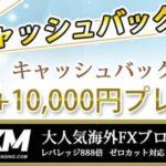 XM FXRoyalCashBack バナー 650*300