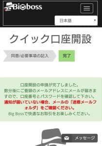 ビッグボス(Bigboss) 登録 06