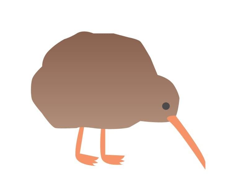 キウィ(鳥) 02